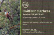COIFFEUR D'ARBRES_Logo1 (2)